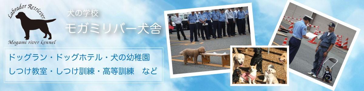 犬のことなら犬の学校「モガミリバー犬舎」